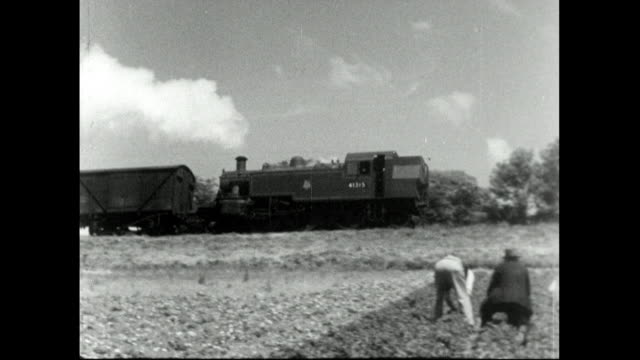 steam train passes people picking strawberries; 1957 - trug stock videos & royalty-free footage