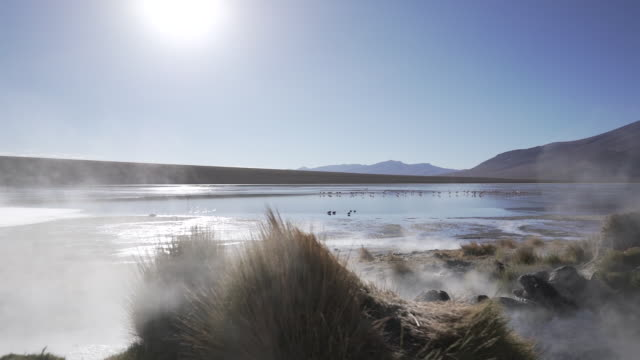 steaming hot lake in the andean mountains - sulphur stock videos & royalty-free footage