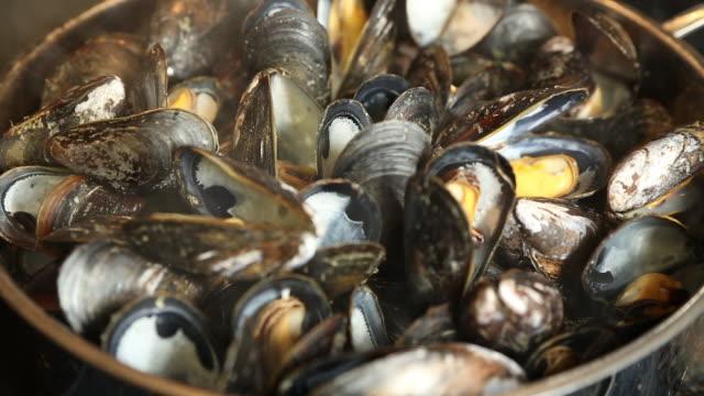パンでムール貝を蒸す - ムール貝点の映像素材/bロール