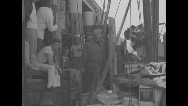 """steamship ss new bedford at dock, sailboats in fgd / fishing boat """"anna"""" with crates on it at dock, workers sitting on dock / vs wharf workers unload... - scaricare video stock e b–roll"""