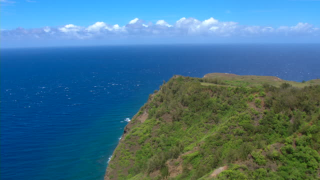 a steep, lush cliff overlooks the vivid blue waters of the pacific ocean in maui. - pazifikinseln stock-videos und b-roll-filmmaterial
