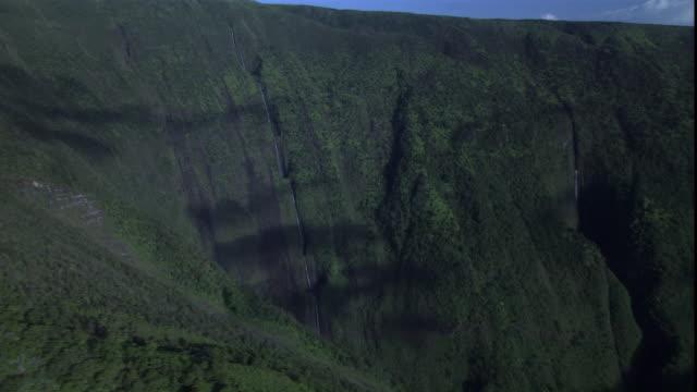 steep mountains and valleys compose the hawaiian landscape. - 生い茂る点の映像素材/bロール