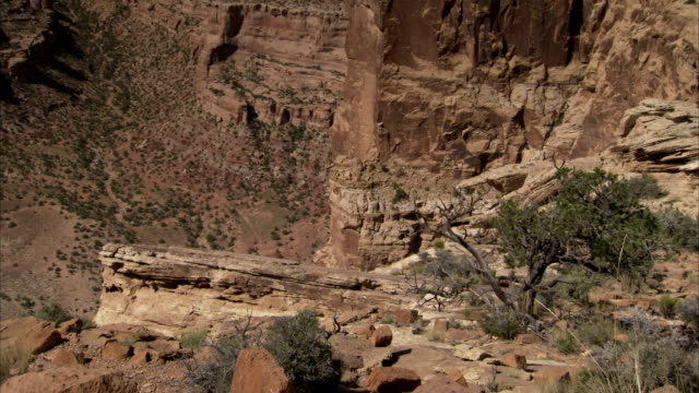 a steep rock cliff borders a desert canyon. available in hd - shrubland stock videos & royalty-free footage