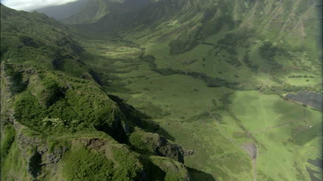 steep volcanic ridges shelter tropical valleys. - 生い茂る点の映像素材/bロール