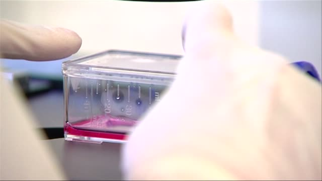 stem cell container - stem cell stock videos & royalty-free footage