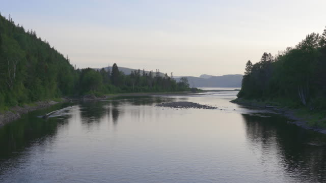 ste-marguerite river in summer in saguenay lac saint-jean, quebec - named wilderness area stock videos & royalty-free footage