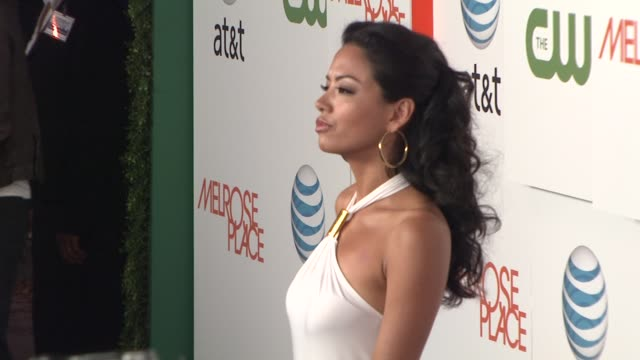 stephanie jacobsen at the 'melrose place' premiere party at west hollywood ca. - 肥皂劇 個影片檔及 b 捲影像