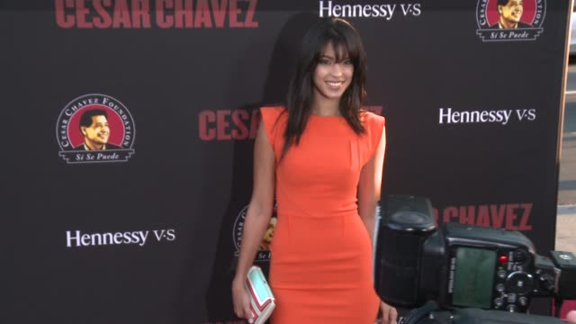 """stephanie sigman - """"cesar chavez"""" los angeles premiere at tcl chinese theatre on march 20, 2014 in hollywood, california. - tcl chinese theatre stock videos & royalty-free footage"""