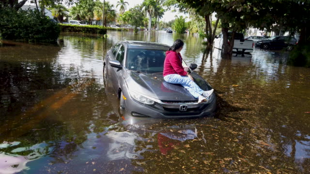 stephanie soto sits on the hood of her car after it stalled in flood waters as she was driving on december 23, 2019 in hollywood, florida. the area... - hollywood florida stock videos & royalty-free footage