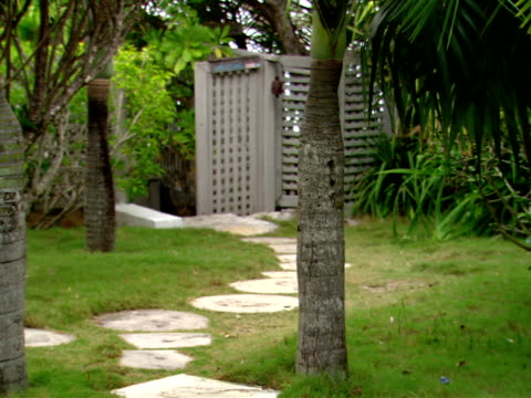 stockvideo's en b-roll-footage met ms,  stepping stones in tropical garden,  harbour island,   bahamas - waaierpalm
