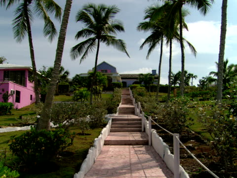 stockvideo's en b-roll-footage met ms,  steps leading to house,  harbour island,  bahamas - waaierpalm