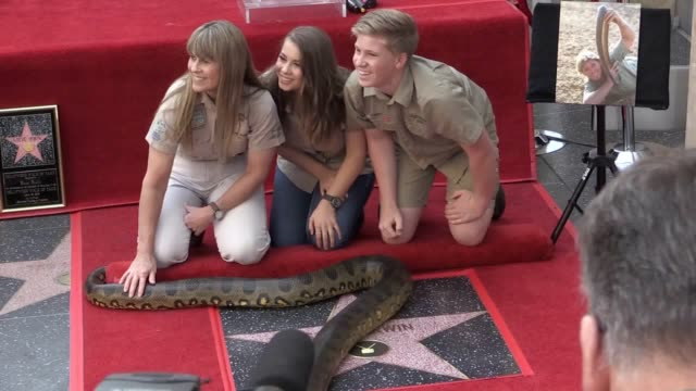 Steve Irwin's family were joined by a fourmetre long snake as the late crocodile hunter was honoured with a star on the Hollywood Walk of Fame Wife...