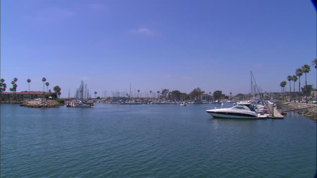 still, quiet boat harbor - fan palm tree stock videos & royalty-free footage