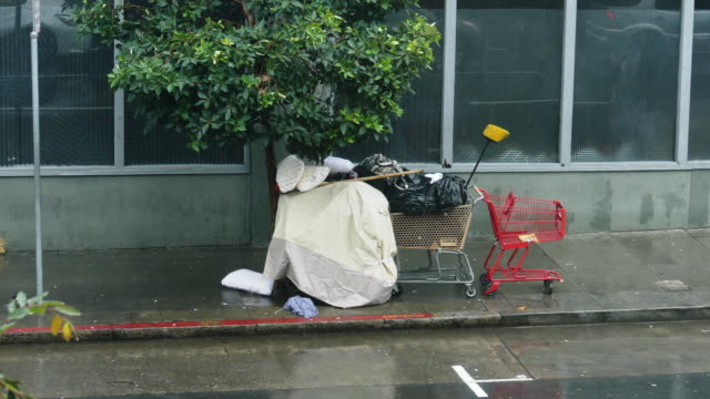still shot of a homeless makeshift tent consisting of shopping carts trash bags and blankets under a tree on the sidewalk it's raining - makeshift stock videos & royalty-free footage