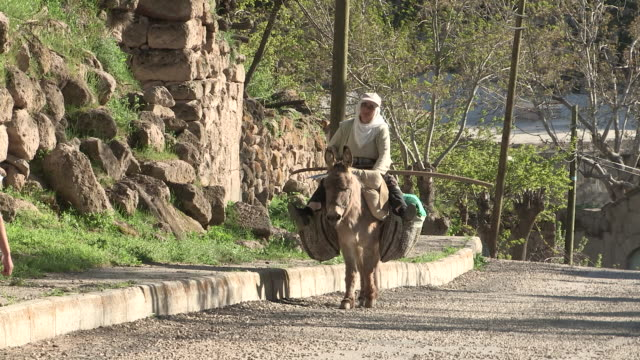 still shot of a woman on a donkey approaching the camera and teen girl walking away from it - esel stock-videos und b-roll-filmmaterial