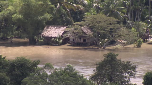 still shot of papua new guinea's sepik river - papua new guinea stock videos and b-roll footage