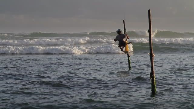 ms stilt fisherman (pole fisherman) casting for sardines / ahangama, southern province, sri lanka - pole stock videos and b-roll footage