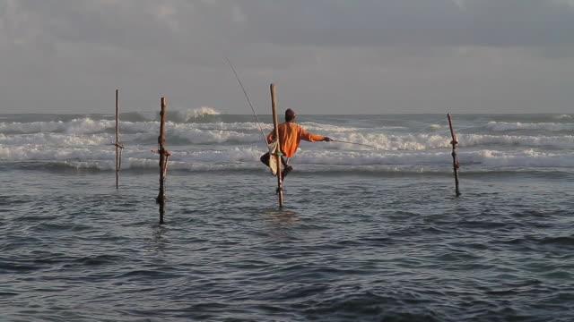 MS Stilt fisherman (pole fisherman) casting for sardines / Ahangama, Southern Province, Sri Lanka
