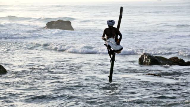 stilt fisherman in weligama, sri lanka - sri lanka people stock videos & royalty-free footage