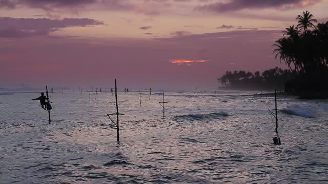 ws stilt fisherman (pole fisherman) swimming back to shore at sunset / ahangama, southern province, sri lanka - sri lankan culture stock videos & royalty-free footage