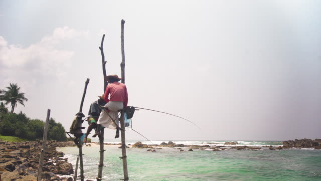 stilt fishermen at sri lanka. iconic image - newly industrialized country stock videos and b-roll footage