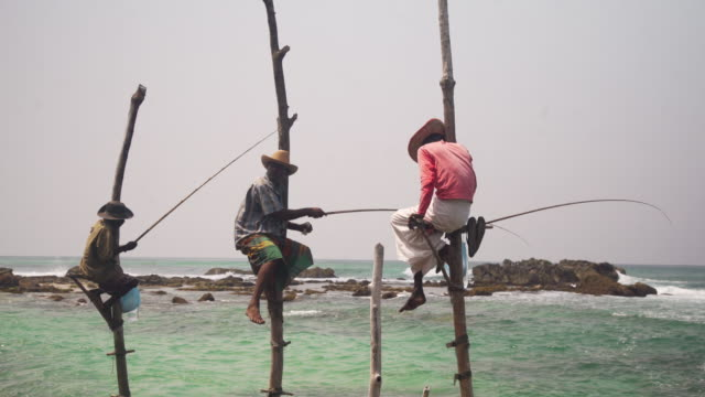 stilt fishermen at sri lanka. iconic image - newly industrialized country stock videos & royalty-free footage