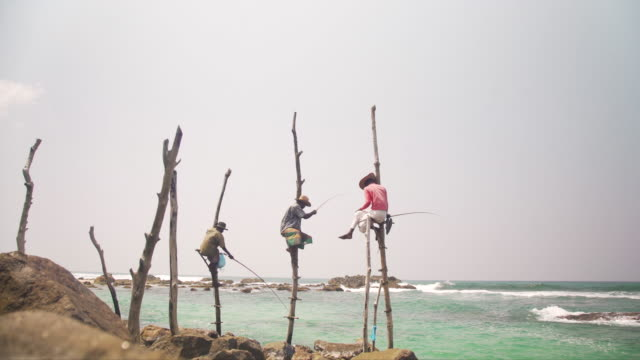 stilt fishermen at sri lanka. iconic image - stilts stock videos and b-roll footage