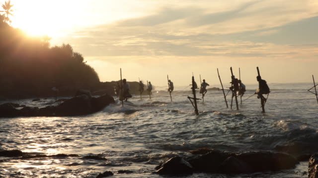 stilt fishermen at the sunrise - sri lanka stock videos and b-roll footage