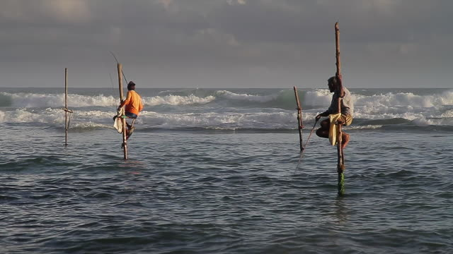 ms stilt fishermen (pole fishermen) casting for sardines / ahangama, southern province, sri lanka - sri lankan culture stock videos & royalty-free footage