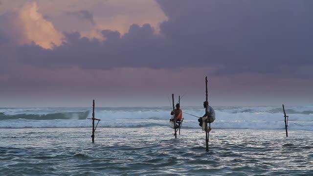 MS Stilt fishermen (pole fishermen) casting for sardines / Ahangama, Southern Province, Sri Lanka