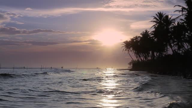 ms stilt fishermen (pole fishermen) silhouetted against sun / ahangama, southern province, sri lanka - sri lankan culture stock videos & royalty-free footage