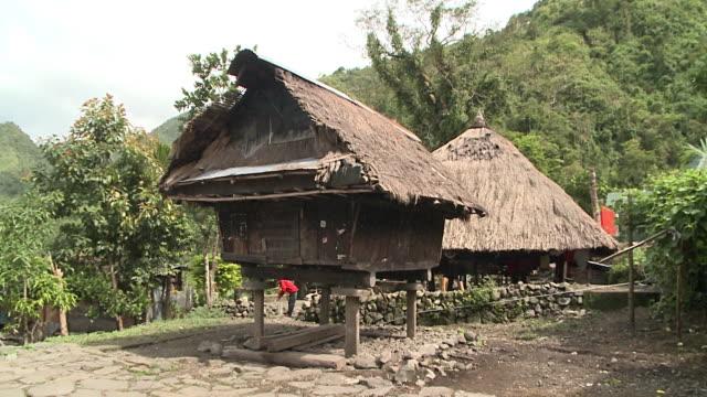 stilt house of batad village, philippines - stilt house stock videos & royalty-free footage