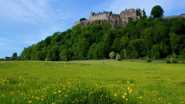 Stirling Castle & Buttercup Field, Stirlingshire, Scotland