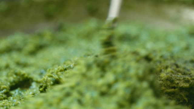 stirring coriander - coriander stock videos & royalty-free footage