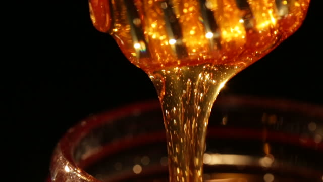 vídeos de stock, filmes e b-roll de stirring honey - mel
