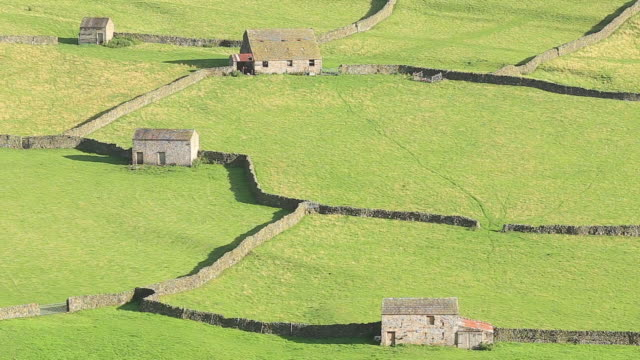 stone barns near to gunnerside in swaledale, uk. - 1954 stock videos & royalty-free footage
