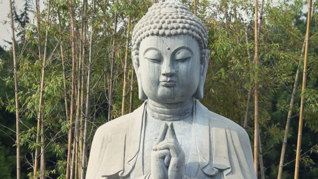 ls stone buddha statue and bamboo forest/xian,shaanxi,china - buddha stock videos & royalty-free footage