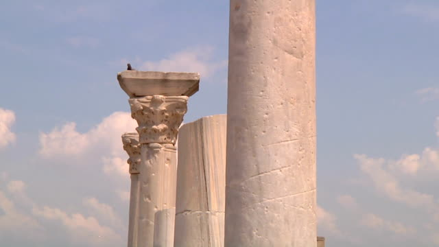 stone columns in ancient greek settlment chersonesus founded in 6th century bce on black sea shore in modern crimea - antiquität stock-videos und b-roll-filmmaterial