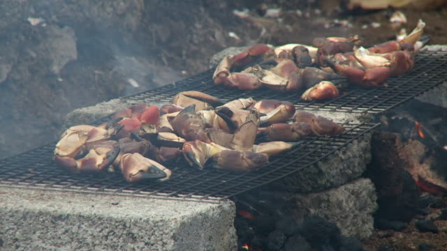 stone crab claws on two grills - crustacean stock videos & royalty-free footage