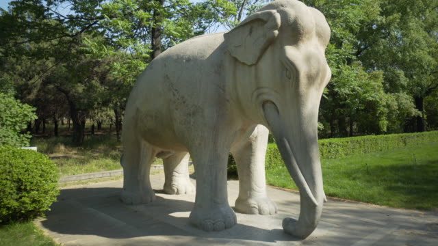stone elephant statue against trees at ming dynasty tombs - beijing, china - ming tombs stock videos and b-roll footage
