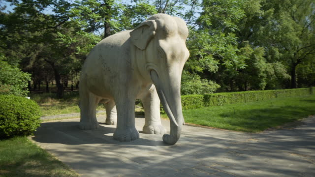 stockvideo's en b-roll-footage met stone elephant statue at ming dynasty tombs - beijing, china - tuinpad