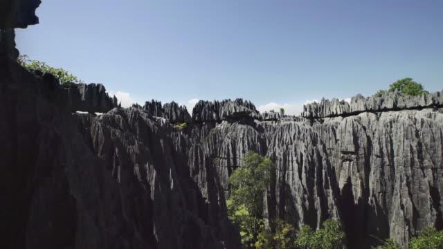 マダガスカルの石の森 - マダガスカル点の映像素材/bロール