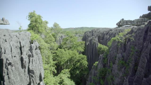 石林 - マダガスカル点の映像素材/bロール
