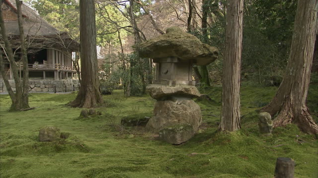 MS Stone lantern in moss covered forest, Sanzenin temple in background, Kyoto, Japan
