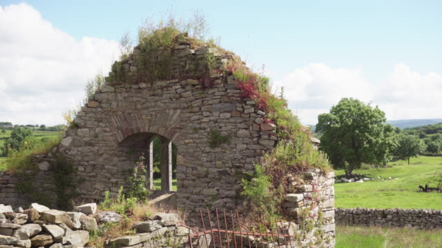 Stone ruins in Ireland field