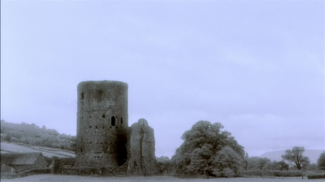 stockvideo's en b-roll-footage met ws, composite, stone tower and tree - cross processen