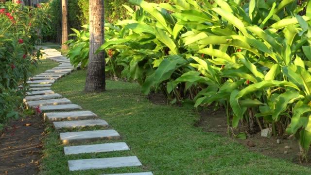 vídeos y material grabado en eventos de stock de pasarela de piedra en el jardín - formal garden