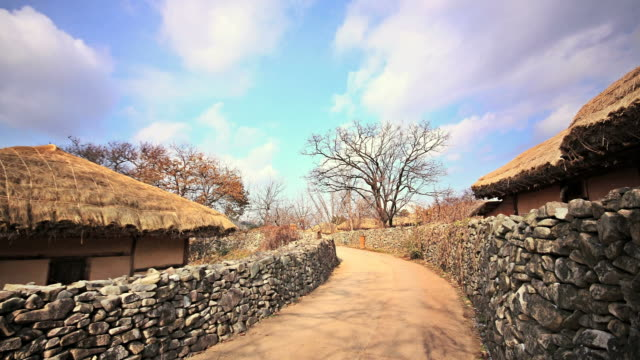 ms t/l stone wall with thatched roof house / asan, chungcheongnam-do, south korea - thatched roof stock videos & royalty-free footage