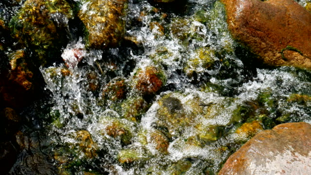 Stones in stream with smooth flowing water.