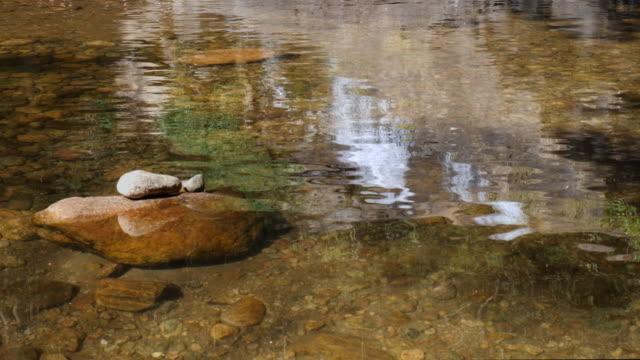 vidéos et rushes de stones in the water, cinemagraph loop - torrent